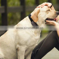 Pet Collars & Leashes Type and Dogs Application gps tracker