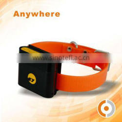 Dog /Pet/Animal Tracking Program GPS Fleet Tracking Systems with collar